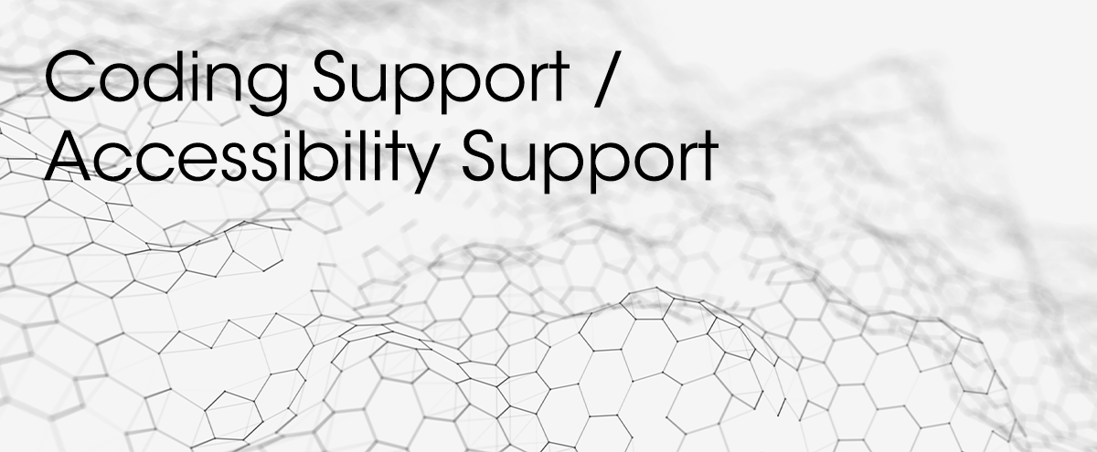 Coding Support / Accessibility Support